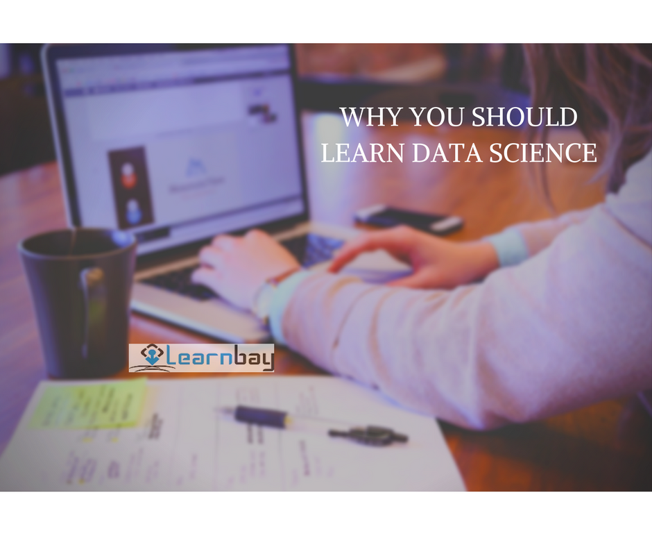 WHY YOU SHOULD LEARN DATA SCIENCE