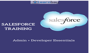 salesforce training in bangalore